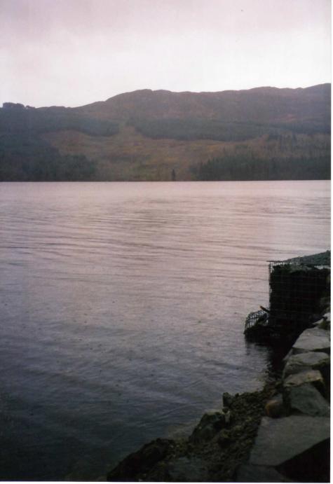 Loch Ness Otter