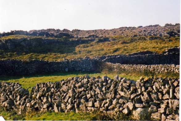 StoneFences