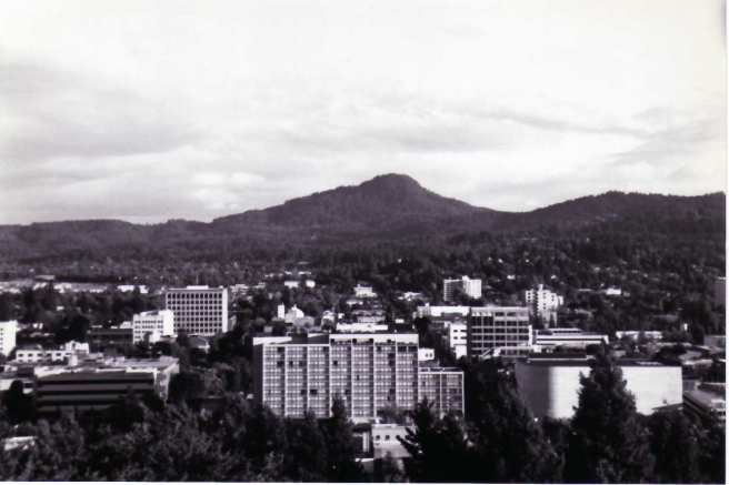 To be honest I'm not sure if this photo is of Spencer Butte or from Spencer Butte, but you get the gist