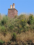 A chimney peeks up for the overgrown fortification.