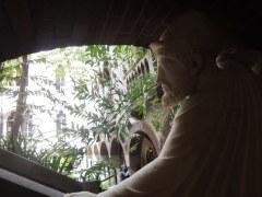 Odysseus peers into the courtyard