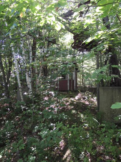 Lift Station in the woods.