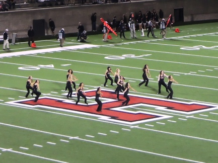 The Harvard dance squad does a quick show between quarters.