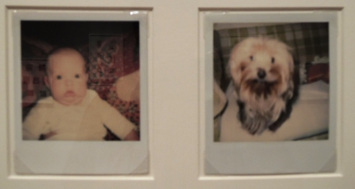 Snapshots of surprised baby and dog.