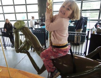 The joy of mantis-back riding