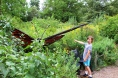 Giant butterfly!