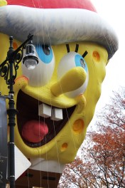 Spongebob closeup